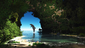 Dolphin in a hidden cave Stock Photos