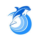 Dolphin icon Stock Images