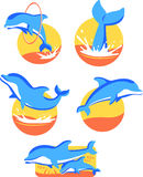 Dolphin icons. Five Dolphin icons set, with five different dolphins in five different situations  illustration Stock Photography