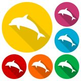 Dolphin icons set with long shadow. Vector icon Royalty Free Stock Image