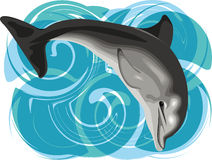 Dolphin illustration Royalty Free Stock Photo