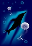 Dolphin and jellyfish Royalty Free Stock Photos