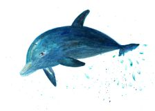 The dolphin jumps out of the water. Watercolor illustration. Dolphin in the jump. Fashionable background for print, fabric, shirt Royalty Free Stock Images