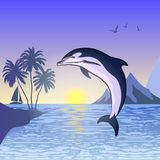 Dolphin jumped out of the sea. Dolphin jumping against the sunset background Stock Photos