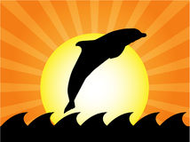 Dolphin jumping. In ocean at sunset. This is illustration Stock Photography