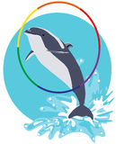 Dolphin jumping out of water through hoop  flat illustrati Royalty Free Stock Photography