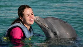 Dolphin kiss young woman in blue water. Smiling woman swimming with dolphin. stock footage