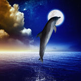 Dolphin and moon. Dolphin jumping, full moon above sea, glowing clouds and horizon. Elements of this image furnished by NASA Royalty Free Stock Photos