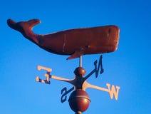 Dolphin Navigation Compass Stock Photo