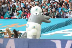 Dolphin. NFL Football Stock Image