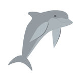 Dolphin ocean fish friendly cute Stock Image