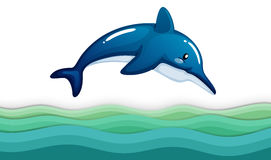 A dolphin in the ocean Stock Photography