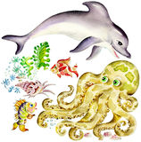 Dolphin and octopus. Aquatic animals: dolphin and octopus, fishes and shell Stock Photos