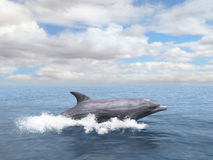 Dolphin, Porpoise, Sea, Ocean Illustration. Illustration of a dolphin or porpoise swimming in a sea or ocean. Representation of wildlife in its home environment Stock Photo