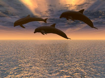 Dolphin red sunset. Three dolphins floating at ocean and drama sky vector illustration