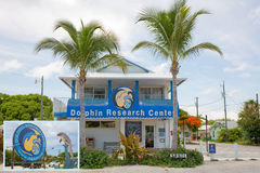 Dolphin Research Center Royalty Free Stock Image