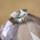 Dolphin ring Royalty Free Stock Images