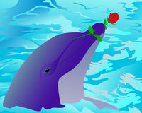 Dolphin and a rose Stock Photography