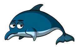 Dolphin with sad face. Illustration Stock Photography