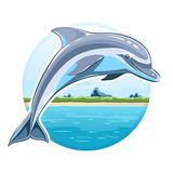 Dolphin on sea background Royalty Free Stock Photography
