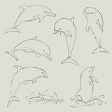 Dolphin set collection. Vector illustration royalty free illustration