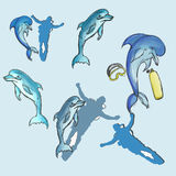 Dolphin set hand drawn Royalty Free Stock Photo