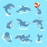 Dolphin set. Nine Dolphin set collection, with dolphin playing with ball, with red ring, jumping, two dolphins, and swimming  illustration Royalty Free Stock Image