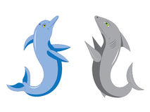 Dolphin and shark. Stock Photos