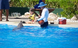 Dolphin show at Dolphinaris Royalty Free Stock Photography