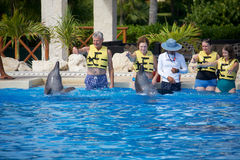 Dolphin show at Dolphinaris Stock Photos