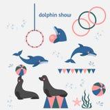 Dolphin show, dolphinarium, sea lion, seal, aqua circus, ocian animal royalty free illustration