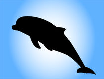 Dolphin silhouette stock image