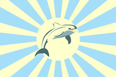 Dolphin and the Sun. Dolphin on a background of the Sun, illustration Stock Photo