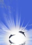 Dolphin and sunrise. Three dolphins floating at ocean (control light stock illustration
