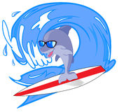 Dolphin surfer Royalty Free Stock Photos