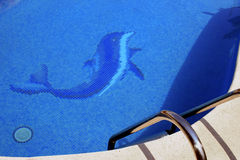 Dolphin in a swimming pool. Pool banister at foreground and dolphin picture at background Stock Image