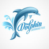Dolphin. Swimming pool sign template. Vector Stock Images