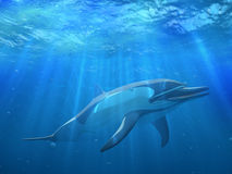 Dolphin under water. With bubbles Stock Images