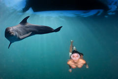 Dolphin underwater meets a latina diver Royalty Free Stock Image