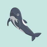 Dolphin . Vector illustration of a funny dolphin Royalty Free Stock Photo