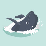 Dolphin . Vector illustration of a funny dolphin Stock Photos