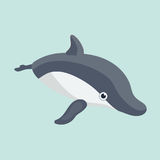 Dolphin . Vector illustration of a funny dolphin Stock Photography