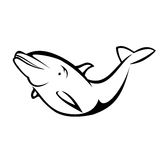 Dolphin. Vector illustration : Dolphin on a white background Stock Image