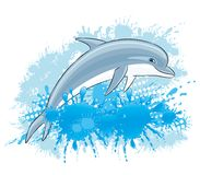 Dolphin and water splash. Dolphin and water splash on a white background Stock Photography