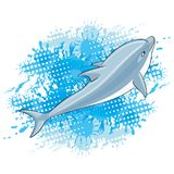 Dolphin and water splash. Dolphin and water splash on a white background Stock Image