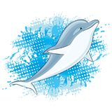 Dolphin and water splash. Dolphin and water splash on a white background Royalty Free Stock Image