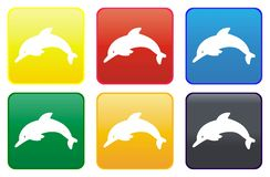 Dolphin web button Royalty Free Stock Image