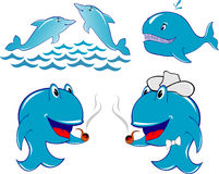 Dolphin whale. Dolphin,  whale,  fish in the sea , illustration Royalty Free Stock Image