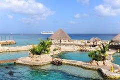 Dolphinarium dans Cozumel Mexique Image stock