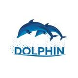 Dolphinarium. Dolphin logo. Banner. Vector flat illustration. Stock Photos